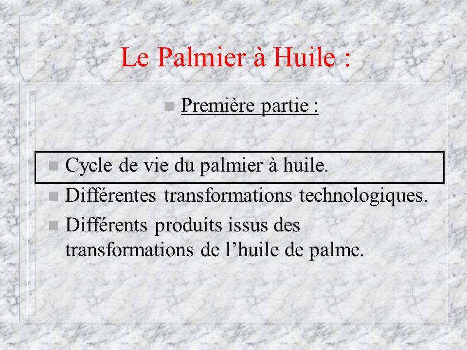 Le Palmier à Huile : n Première partie : n Cycle de vie du palmier à huile. n Différentes transformations technologiques. n Différents produits issus