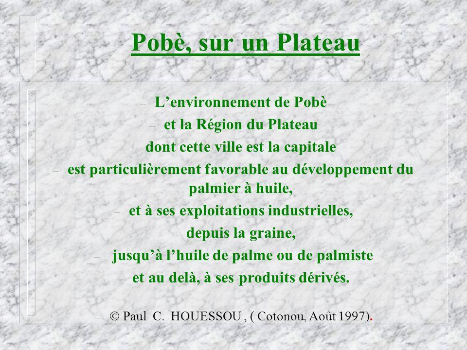 Pobè, sur un Plateau – Lenvironnement de Pobè – et la Région du Plateau – dont cette ville est la capitale – est particulièrement favorable au dévelop