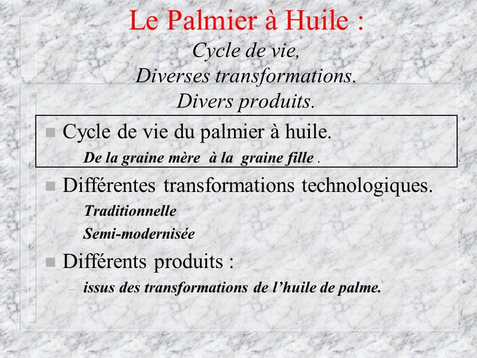 Le Palmier à Huile : Cycle de vie, Diverses transformations. Divers produits. n Cycle de vie du palmier à huile. – De la graine mère à la graine fille