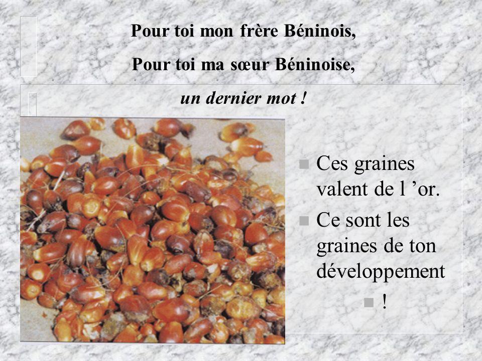 n Ces graines valent de l or. n Ce sont les graines de ton développement n ! Pour toi mon frère Béninois, Pour toi ma sœur Béninoise, un dernier mot !