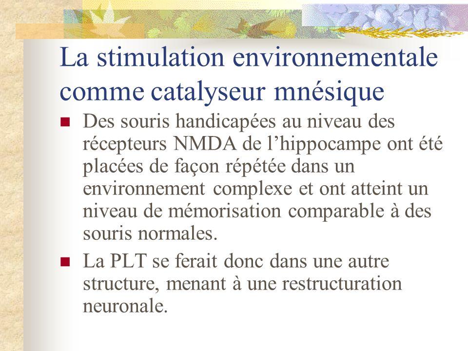 La stimulation environnementale comme catalyseur mnésique Des souris handicapées au niveau des récepteurs NMDA de lhippocampe ont été placées de façon
