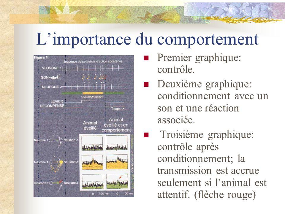 Limportance du comportement Premier graphique: contrôle. Deuxième graphique: conditionnement avec un son et une réaction associée. Troisième graphique