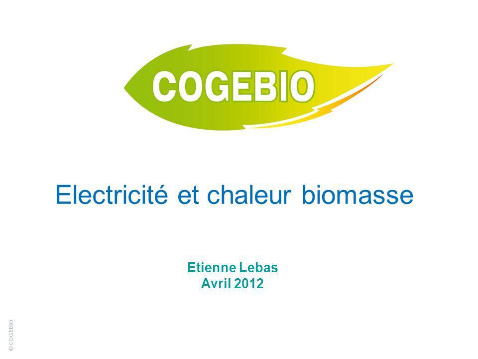 © COGEBIO Electricité et chaleur biomasse Etienne Lebas Avril 2012