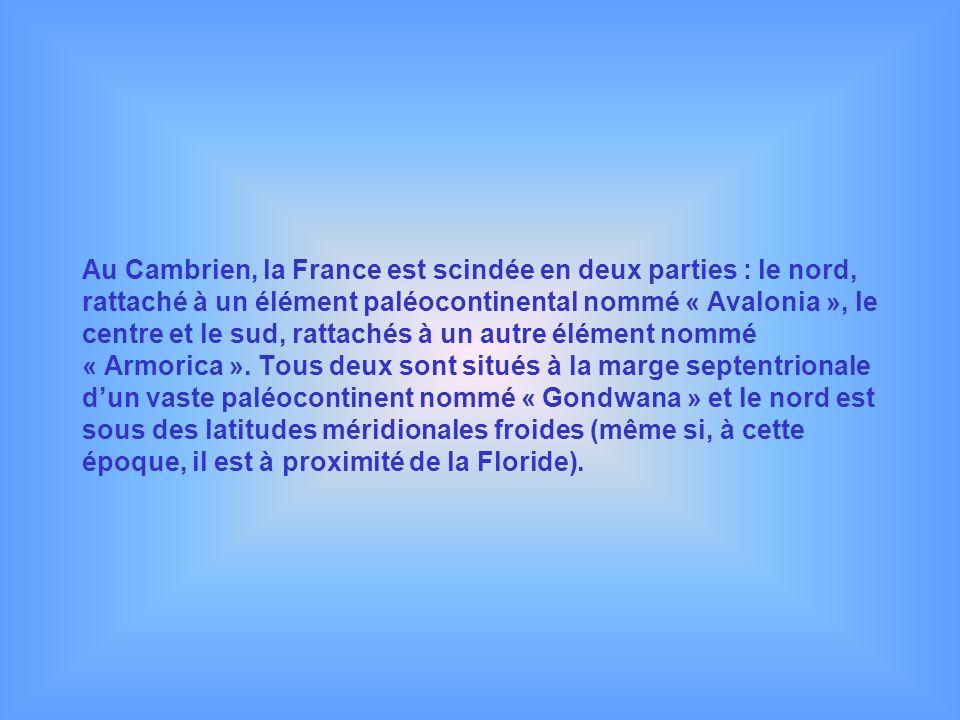 Au Cambrien, la France est scindée en deux parties : le nord, rattaché à un élément paléocontinental nommé « Avalonia », le centre et le sud, rattaché