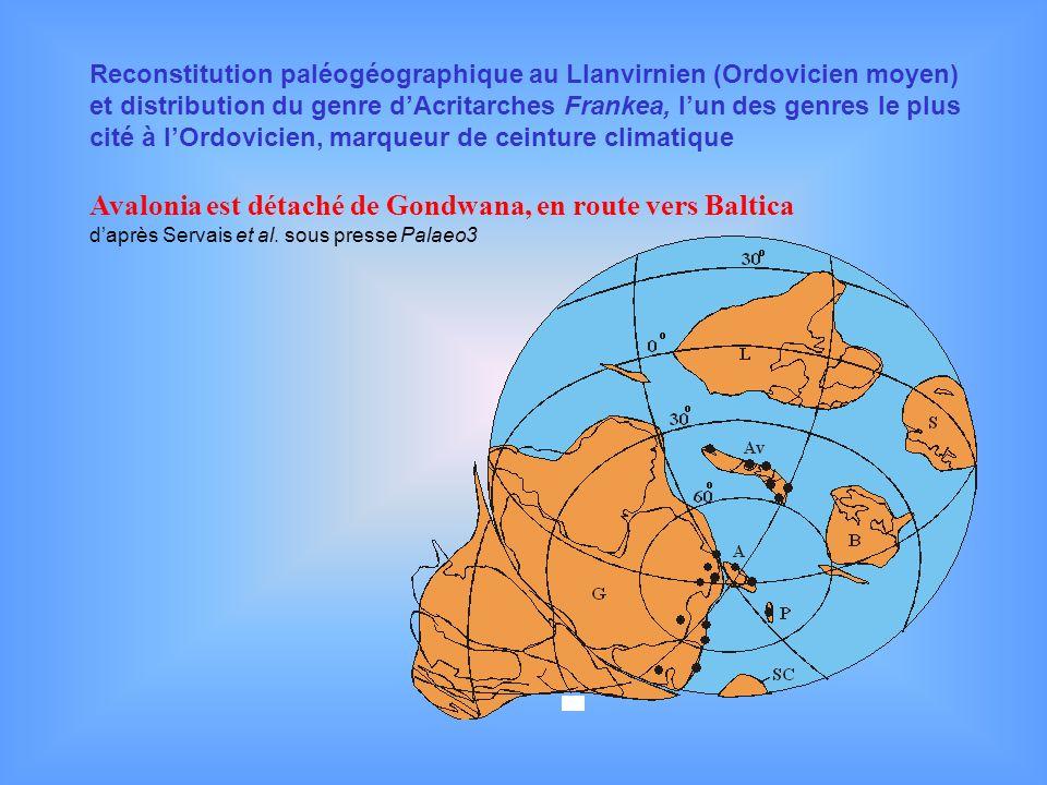 Reconstitution paléogéographique au Llanvirnien (Ordovicien moyen) et distribution du genre dAcritarches Frankea, lun des genres le plus cité à lOrdov
