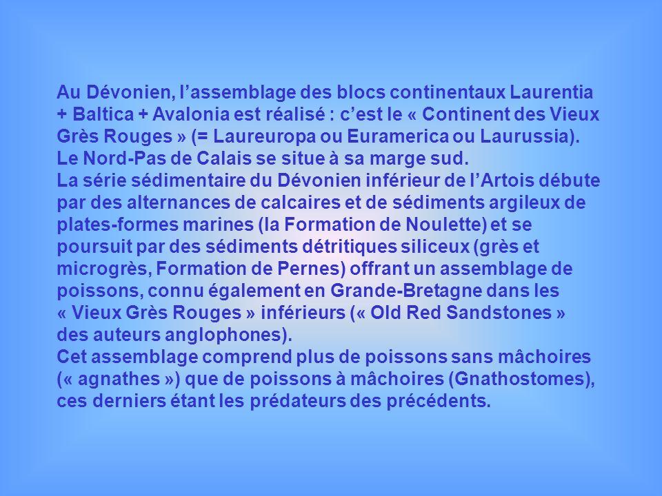 Au Dévonien, lassemblage des blocs continentaux Laurentia + Baltica + Avalonia est réalisé : cest le « Continent des Vieux Grès Rouges » (= Laureuropa