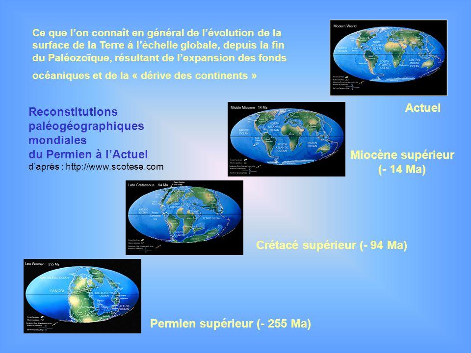 Reconstitutions paléogéographiques mondiales du Permien à lActuel daprès : http://www.scotese.com Permien supérieur (- 255 Ma) Crétacé supérieur (- 94