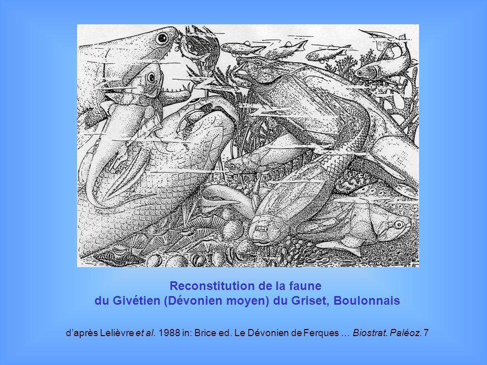 Reconstitution de la faune du Givétien (Dévonien moyen) du Griset, Boulonnais daprès Lelièvre et al. 1988 in: Brice ed. Le Dévonien de Ferques … Biost
