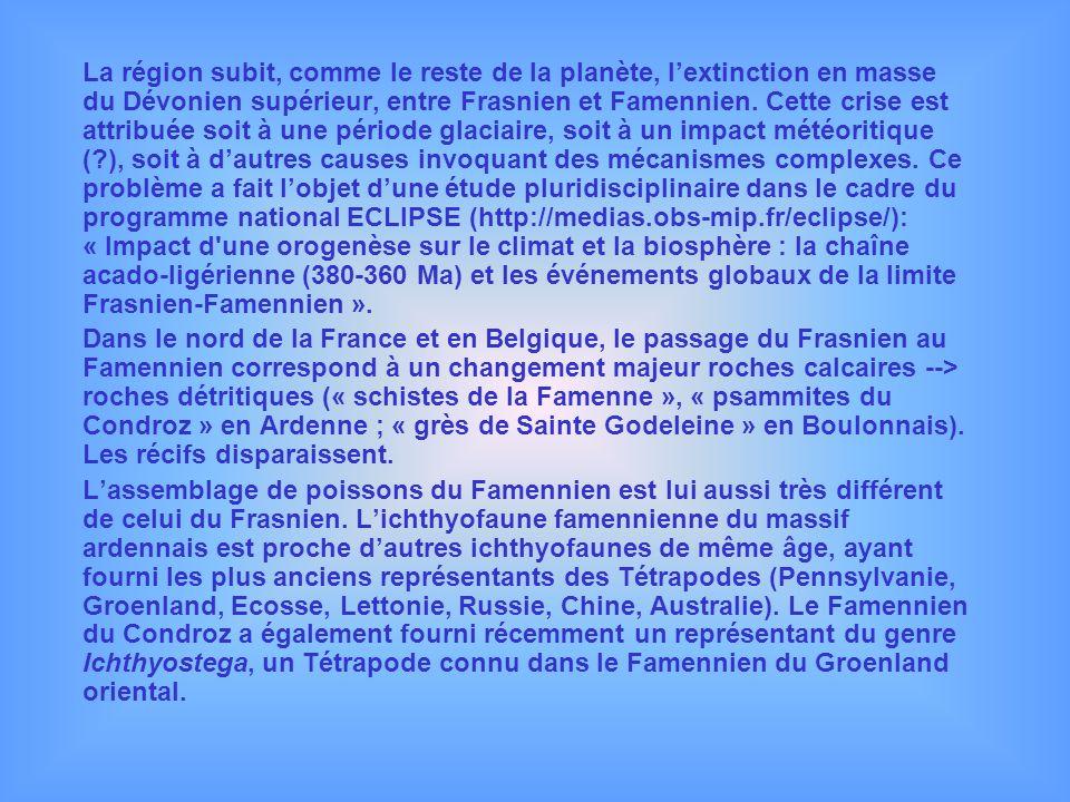 La région subit, comme le reste de la planète, lextinction en masse du Dévonien supérieur, entre Frasnien et Famennien. Cette crise est attribuée soit