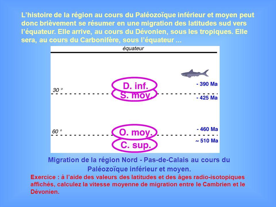 Migration de la région Nord - Pas-de-Calais au cours du Paléozoïque inférieur et moyen. Exercice : à laide des valeurs des latitudes et des âges radio