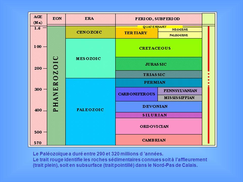 Le Paléozoïque a duré entre 290 et 320 millions d années. Le trait rouge identifie les roches sédimentaires connues soit à laffleurement (trait plein)