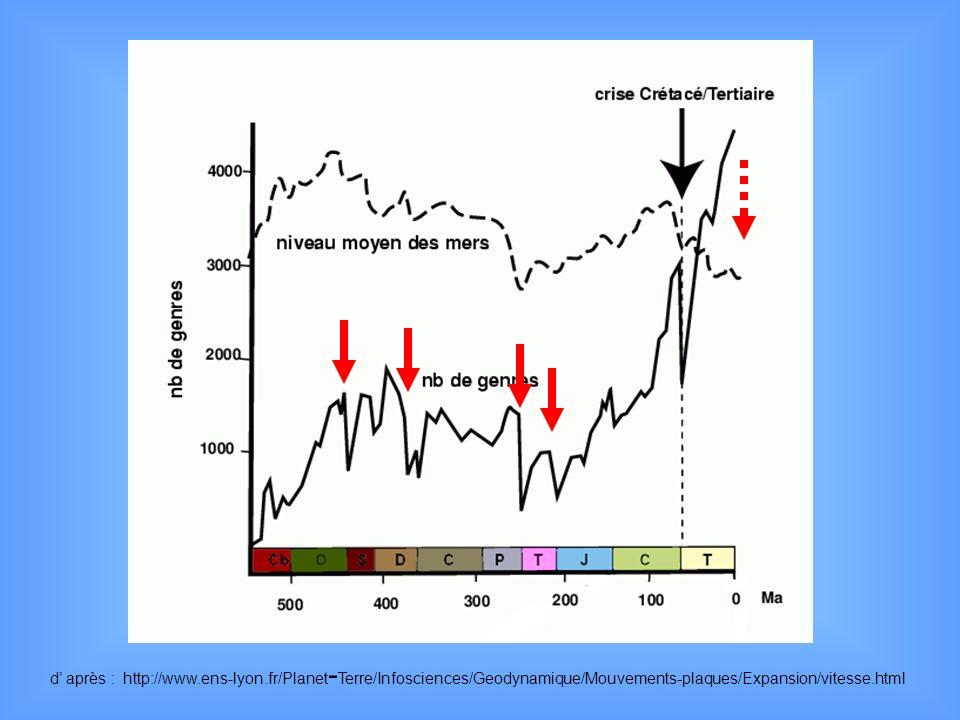 d après : http://www.ens-lyon.fr/Planet - Terre/Infosciences/Geodynamique/Mouvements-plaques/Expansion/vitesse.html