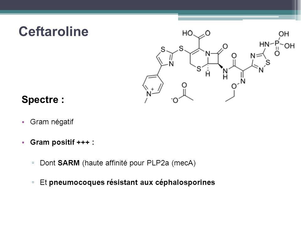 Ceftaroline Spectre : Gram négatif Gram positif +++ : Dont SARM (haute affinité pour PLP2a (mecA) Et pneumocoques résistant aux céphalosporines