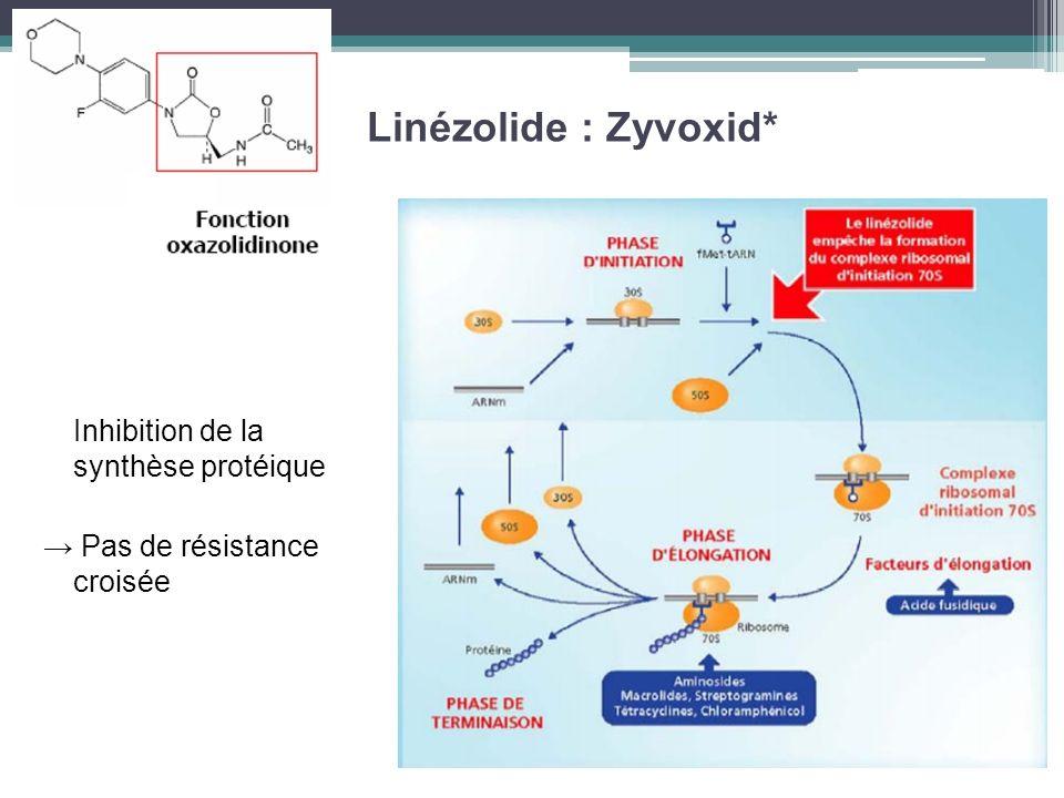 Linézolide : Zyvoxid* Inhibition de la synthèse protéique Pas de résistance croisée