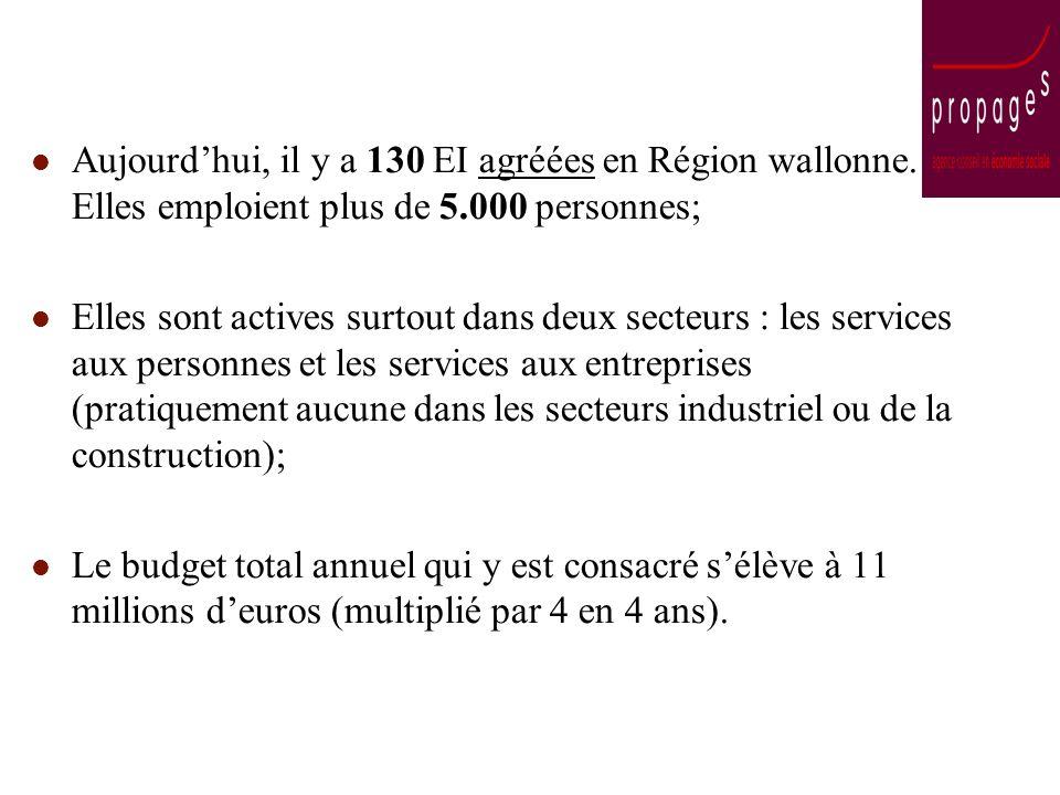 Aujourdhui, il y a 130 EI agréées en Région wallonne. Elles emploient plus de 5.000 personnes; Elles sont actives surtout dans deux secteurs : les ser
