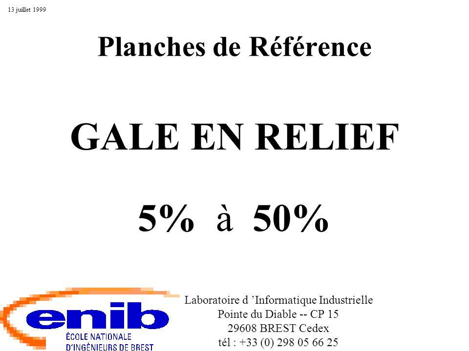 Gale en Relief à 5% Laboratoire d Informatique Industrielle, Pointe du Diable -- CP 15, 29608 BREST Cedex.