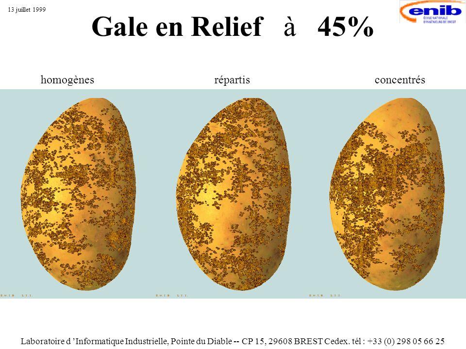Gale en Relief à 45% Laboratoire d Informatique Industrielle, Pointe du Diable -- CP 15, 29608 BREST Cedex. tél : +33 (0) 298 05 66 25 13 juillet 1999