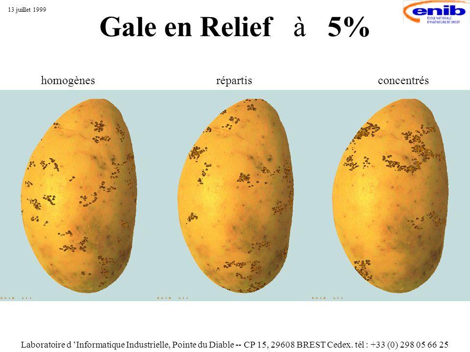 Gale en Relief à 5% Laboratoire d Informatique Industrielle, Pointe du Diable -- CP 15, 29608 BREST Cedex. tél : +33 (0) 298 05 66 25 13 juillet 1999