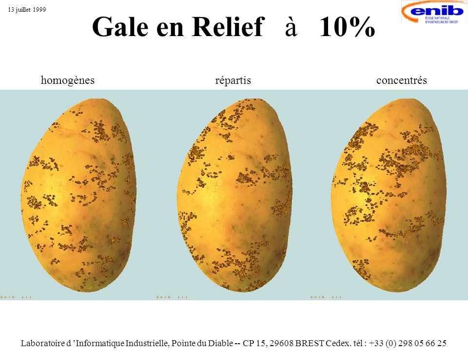 Gale en Relief à 10% Laboratoire d Informatique Industrielle, Pointe du Diable -- CP 15, 29608 BREST Cedex. tél : +33 (0) 298 05 66 25 13 juillet 1999