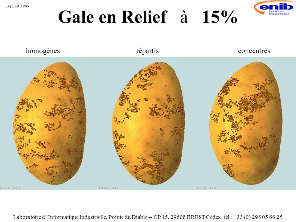 Gale en Relief à 15% Laboratoire d Informatique Industrielle, Pointe du Diable -- CP 15, 29608 BREST Cedex. tél : +33 (0) 298 05 66 25 13 juillet 1999