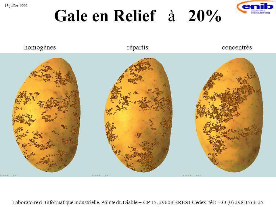 Gale en Relief à 20% Laboratoire d Informatique Industrielle, Pointe du Diable -- CP 15, 29608 BREST Cedex. tél : +33 (0) 298 05 66 25 13 juillet 1999