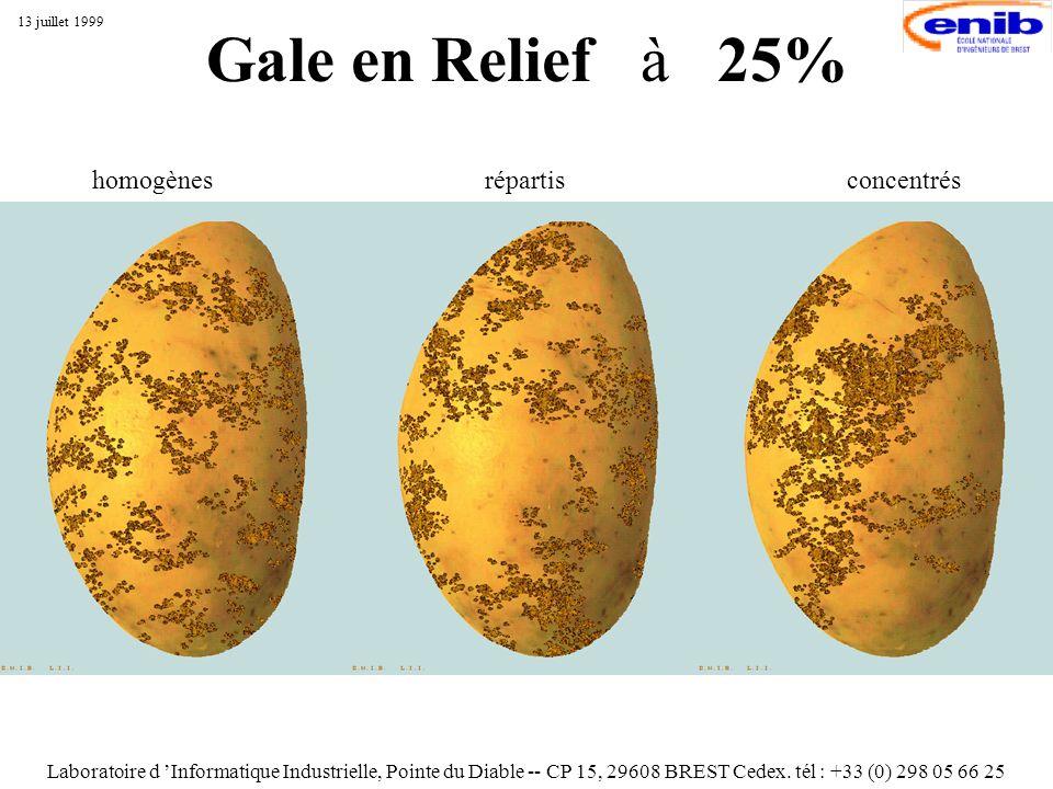 Gale en Relief à 25% Laboratoire d Informatique Industrielle, Pointe du Diable -- CP 15, 29608 BREST Cedex. tél : +33 (0) 298 05 66 25 13 juillet 1999