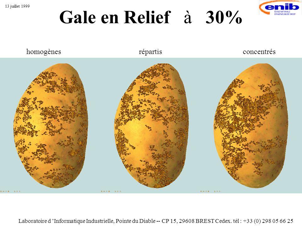 Gale en Relief à 30% Laboratoire d Informatique Industrielle, Pointe du Diable -- CP 15, 29608 BREST Cedex. tél : +33 (0) 298 05 66 25 13 juillet 1999
