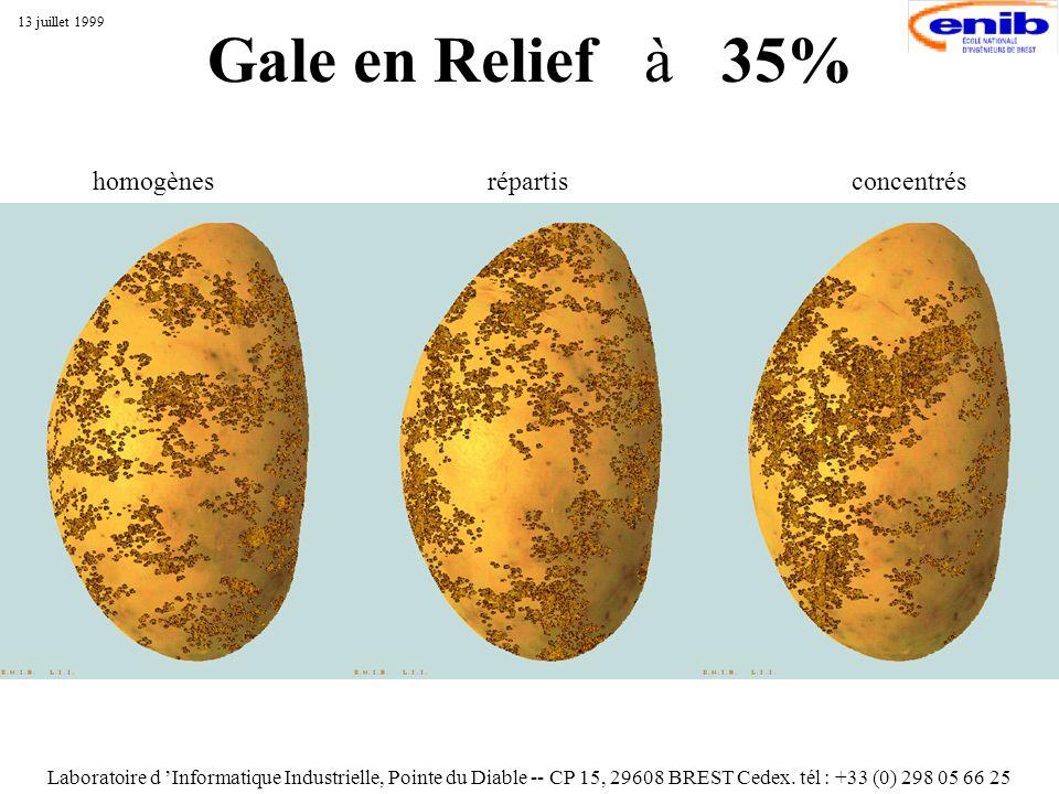 Gale en Relief à 35% Laboratoire d Informatique Industrielle, Pointe du Diable -- CP 15, 29608 BREST Cedex. tél : +33 (0) 298 05 66 25 13 juillet 1999