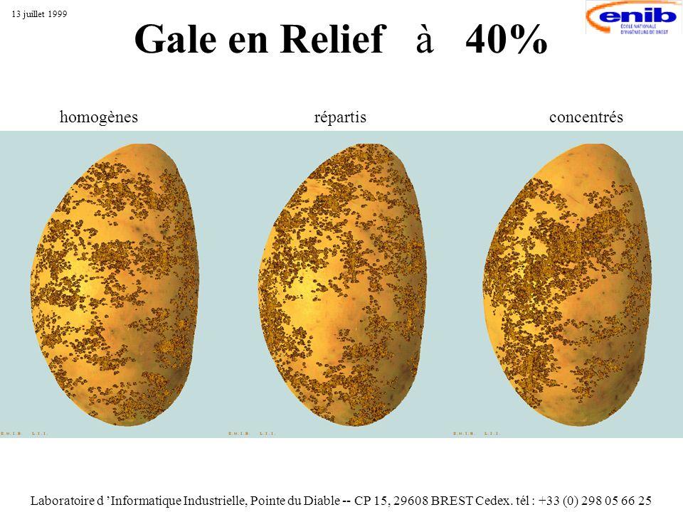 Gale en Relief à 40% Laboratoire d Informatique Industrielle, Pointe du Diable -- CP 15, 29608 BREST Cedex. tél : +33 (0) 298 05 66 25 13 juillet 1999