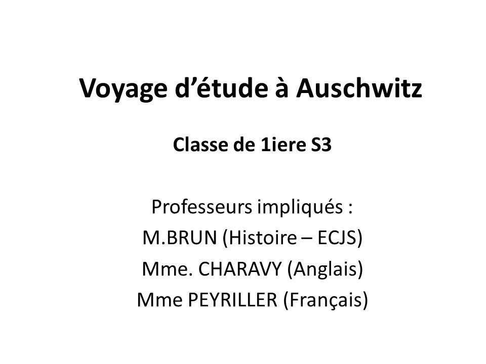 Classe de 1iere S3 Professeurs impliqués : M.BRUN (Histoire – ECJS) Mme. CHARAVY (Anglais) Mme PEYRILLER (Français)