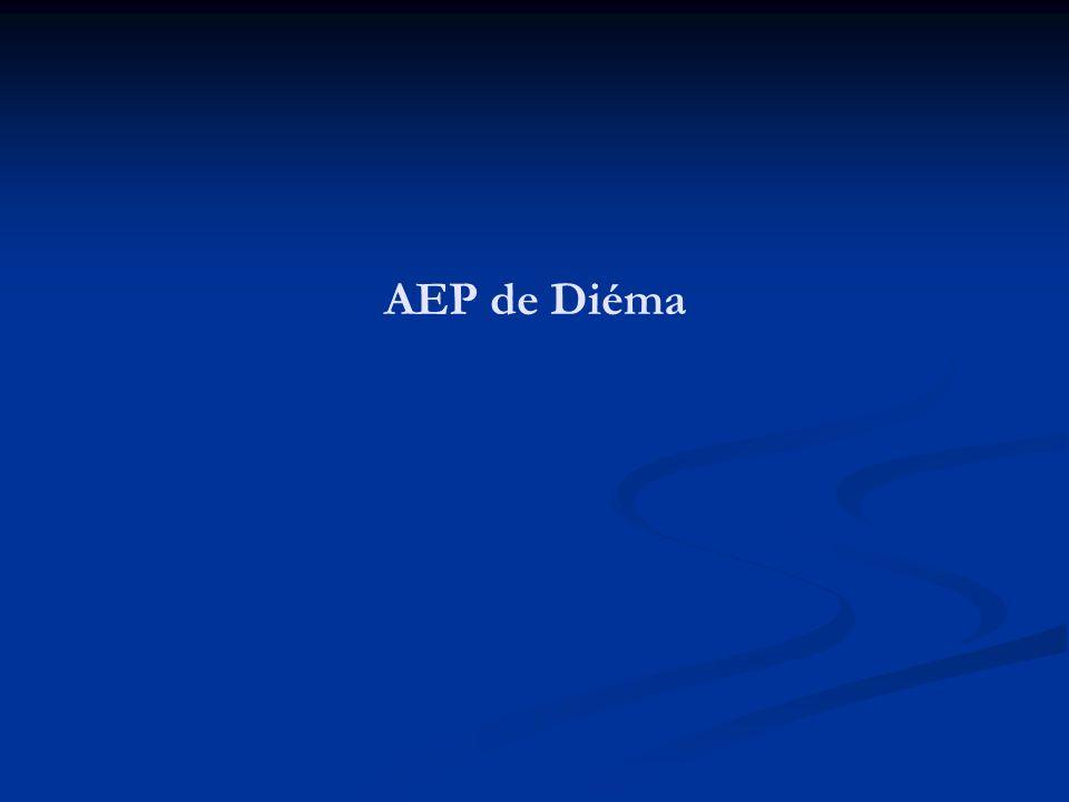 AEP de Diéma