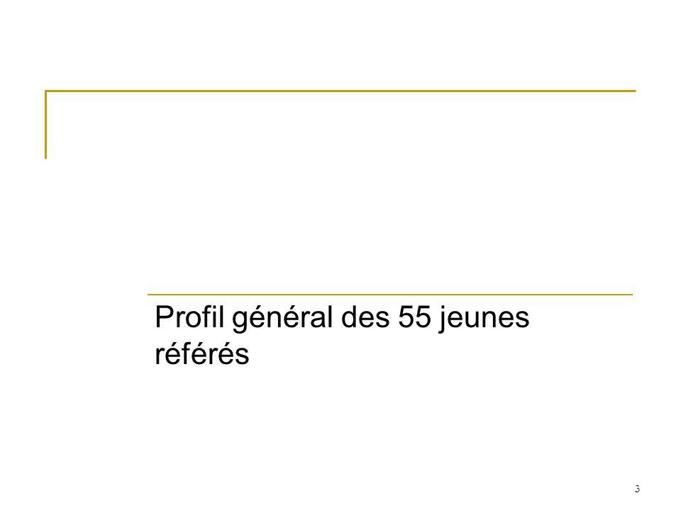 3 Profil général des 55 jeunes référés