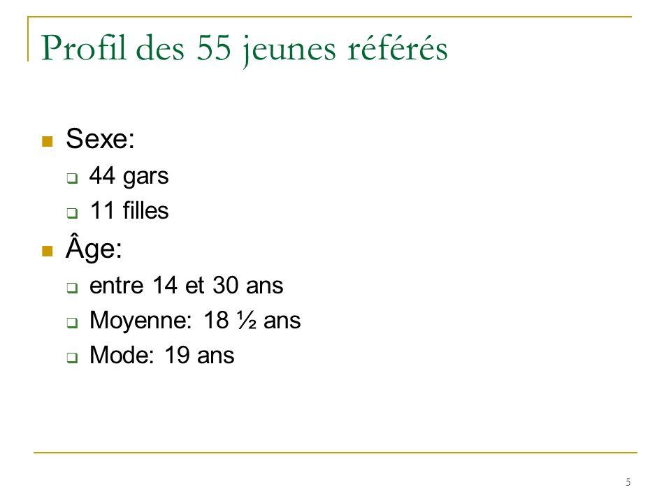 5 Profil des 55 jeunes référés Sexe: 44 gars 11 filles Âge: entre 14 et 30 ans Moyenne: 18 ½ ans Mode: 19 ans