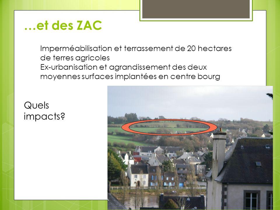 France = pays d Europe qui compte le plus grand nombre d hyper et de supermarchés par habitant ZAC sur mesure pour la grande distribution: - production de masse, délocalisation - modèle agricole productiviste, baisse de la qualité, problèmes de santé publique Des créations demplois.