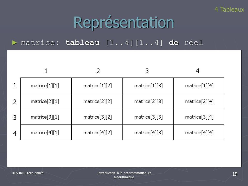 BTS IRIS 1ère annéeIntroduction à la programmation et algorithmique 19 Représentation matrice: tableau [1..4][1..4] de réel matrice: tableau [1..4][1.