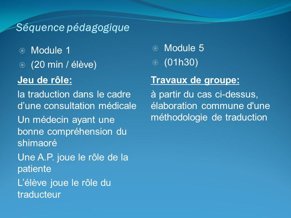 Séquence pédagogique Jeu de rôle: la traduction dans le cadre dune consultation médicale Un médecin ayant une bonne compréhension du shimaoré Une A.P.