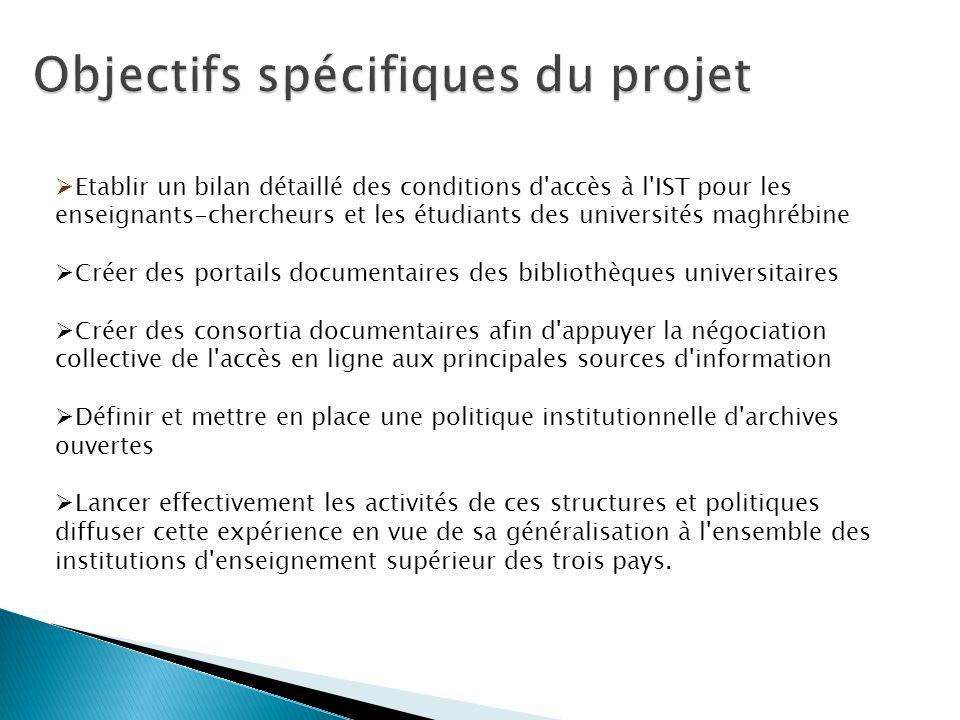 Etablir un bilan détaillé des conditions d'accès à l'IST pour les enseignants-chercheurs et les étudiants des universités maghrébine Créer des portail