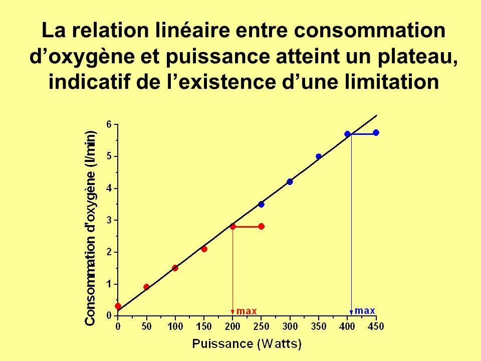 La relation linéaire entre consommation doxygène et puissance atteint un plateau, indicatif de lexistence dune limitation