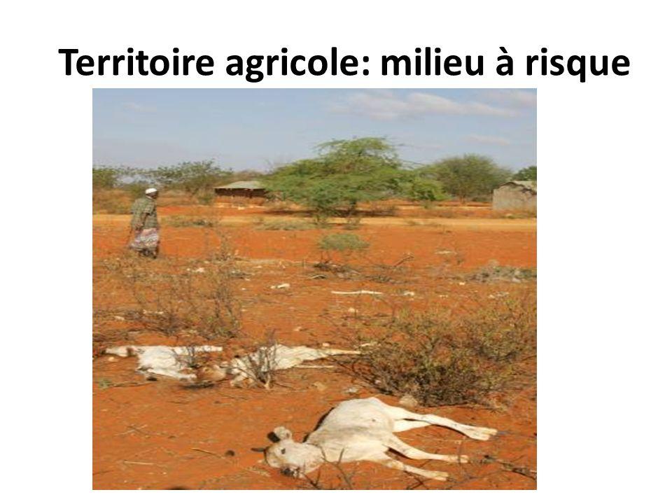 Territoire agricole: milieu à risque