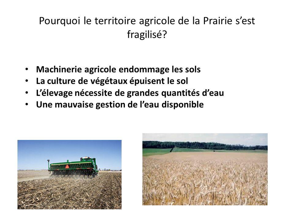 Pourquoi le territoire agricole de la Prairie sest fragilisé? Machinerie agricole endommage les sols La culture de végétaux épuisent le sol Lélevage n