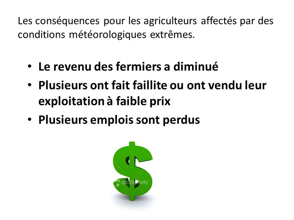 Les conséquences pour les agriculteurs affectés par des conditions météorologiques extrêmes. Le revenu des fermiers a diminué Plusieurs ont fait faill