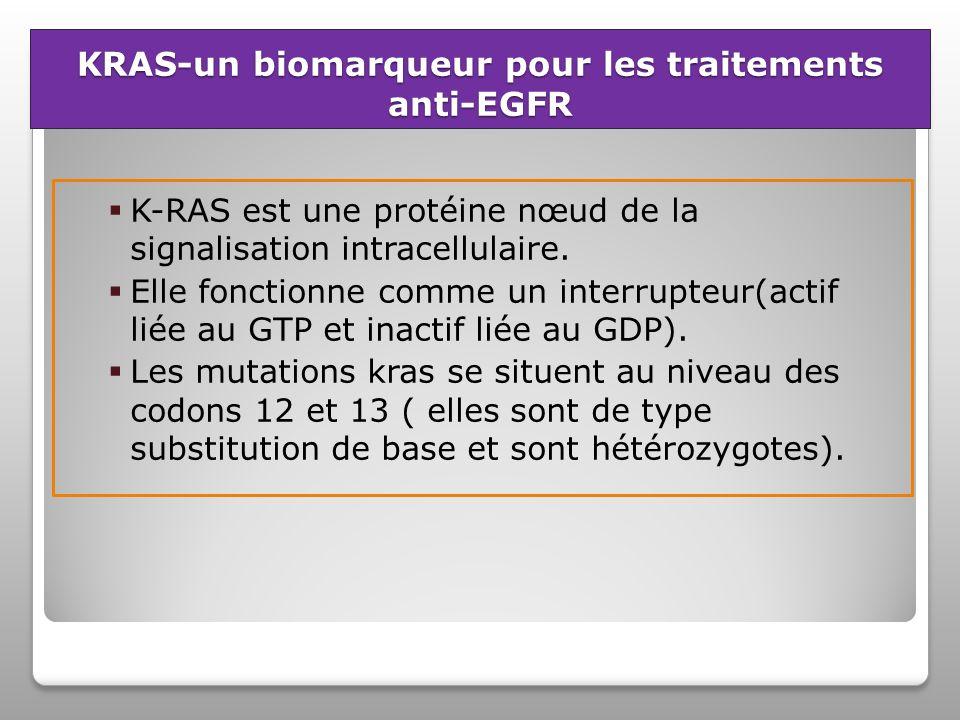 KRAS-un biomarqueur pour les traitements anti-EGFR K-RAS est une protéine nœud de la signalisation intracellulaire.