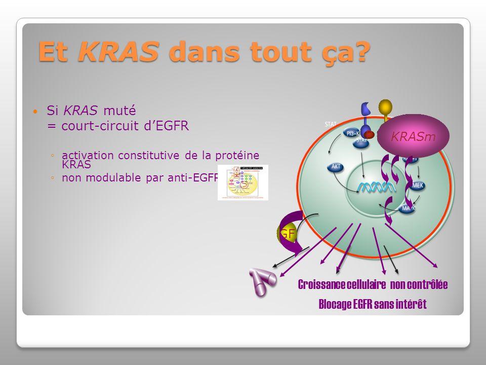 Si KRAS muté = court-circuit dEGFR activation constitutive de la protéine KRAS non modulable par anti-EGFR Et KRAS dans tout ça.