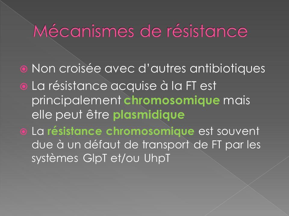 Non croisée avec dautres antibiotiques La résistance acquise à la FT est principalement chromosomique mais elle peut être plasmidique La résistance ch