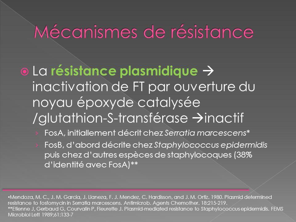 La résistance plasmidique inactivation de FT par ouverture du noyau époxyde catalysée /glutathion-S-transférase inactif FosA, initiallement décrit che
