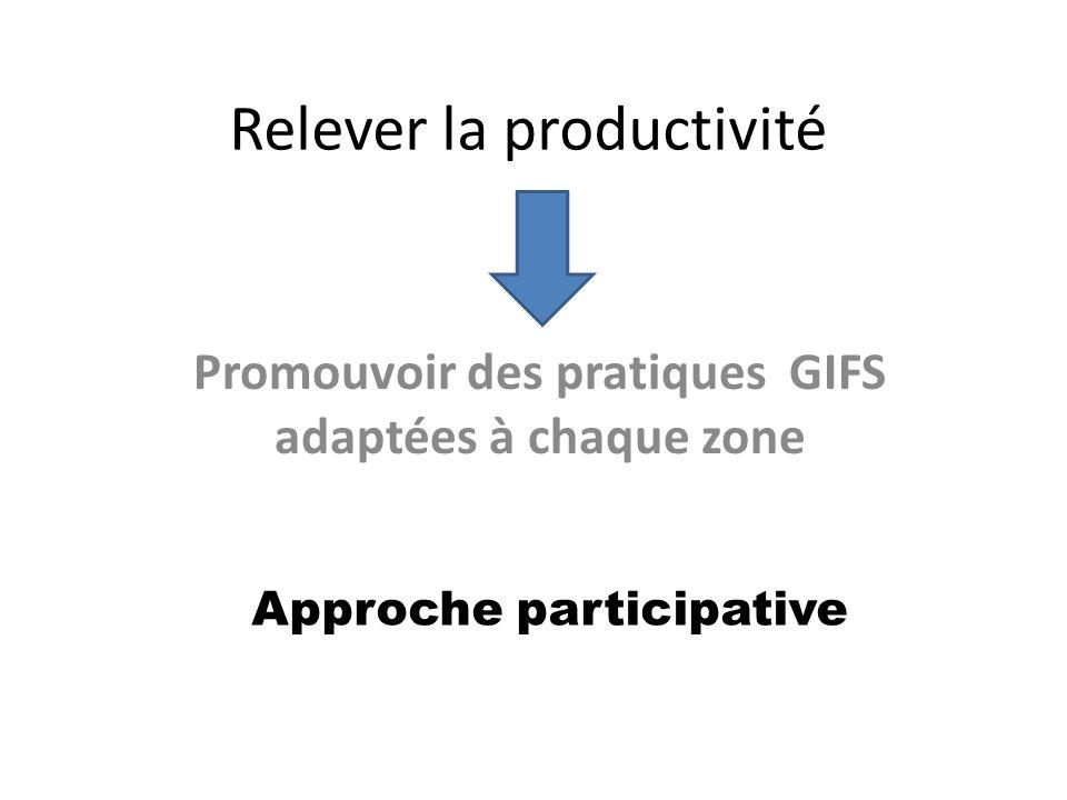 Relever la productivité Promouvoir des pratiques GIFS adaptées à chaque zone Approche participative