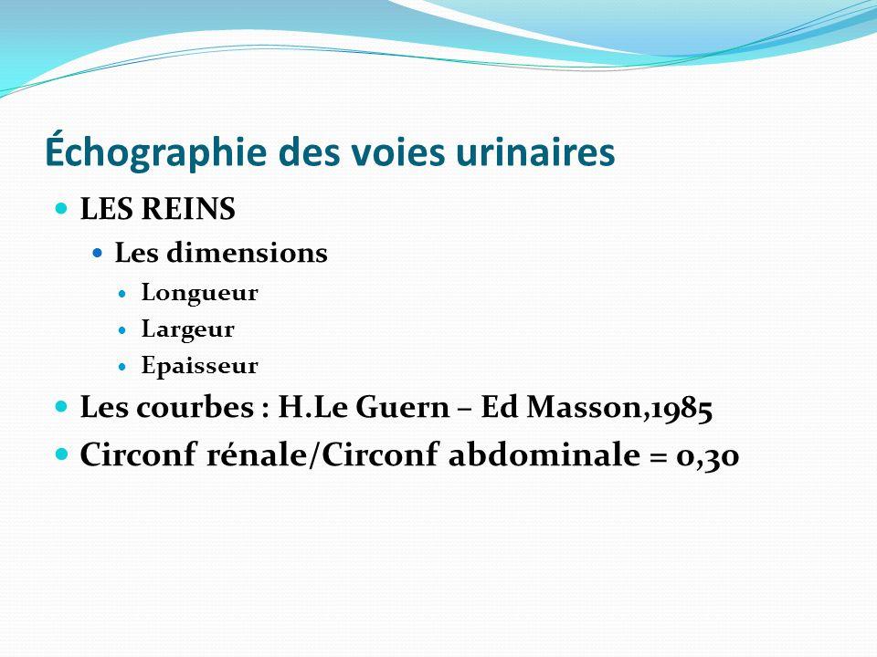 Échographie des voies urinaires LES REINS Les dimensions Longueur Largeur Epaisseur Les courbes : H.Le Guern – Ed Masson,1985 Circonf rénale/Circonf a