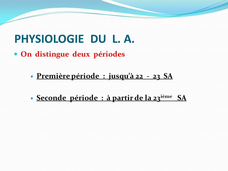 PHYSIOLOGIE DU L. A. On distingue deux périodes Première période : jusquà 22 - 23 SA Seconde période : à partir de la 23 ième SA