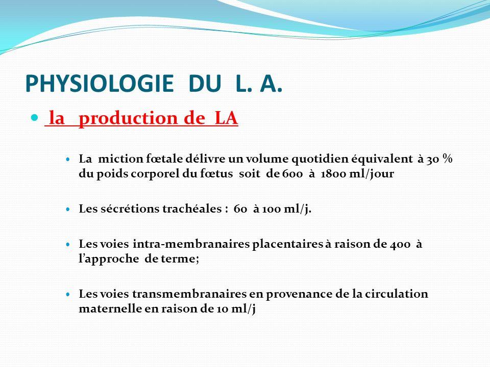 PHYSIOLOGIE DU L. A. la production de LA La miction fœtale délivre un volume quotidien équivalent à 30 % du poids corporel du fœtus soit de 600 à 1800