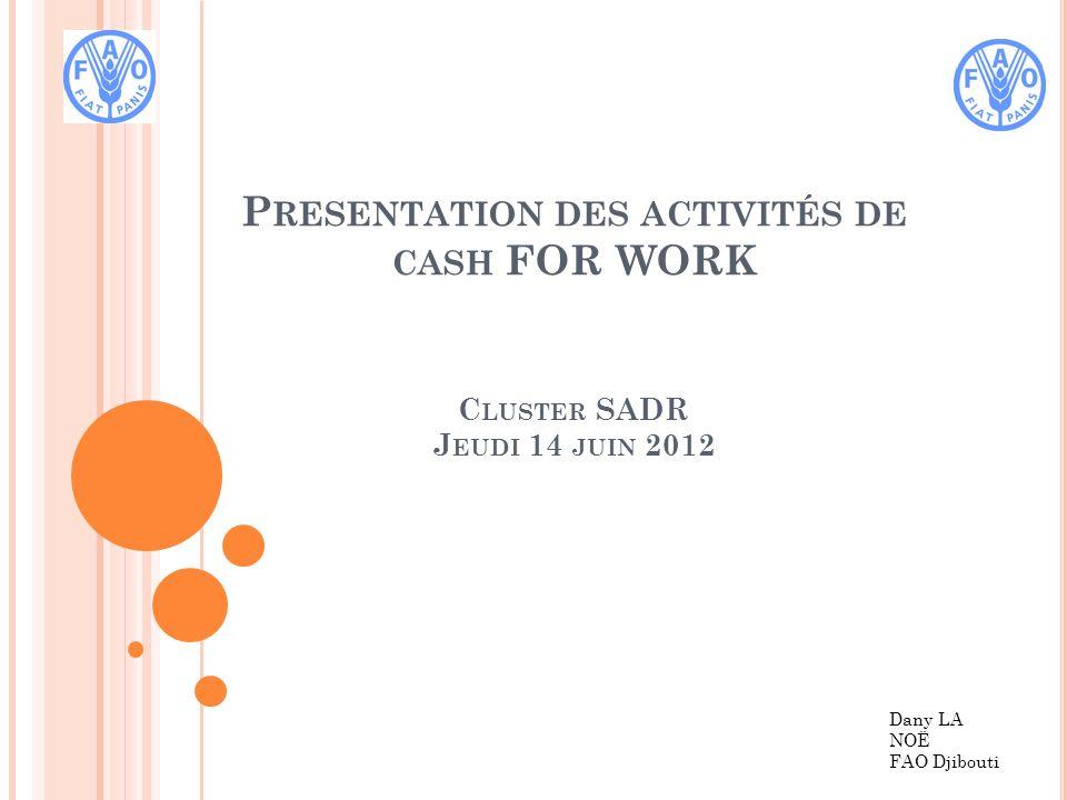 P RESENTATION DES ACTIVITÉS DE CASH FOR WORK C LUSTER SADR J EUDI 14 JUIN 2012 Dany LA NOË FAO Djibouti
